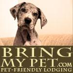Bring My Pet